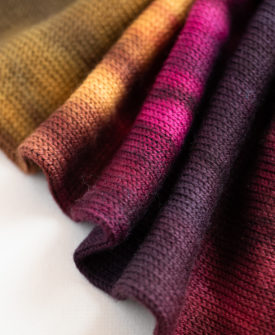 Tapestry Sock Yarn Blank